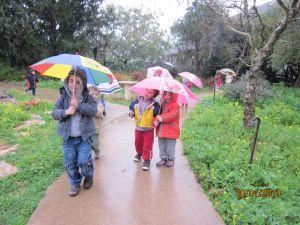 גשם- למידה חווייתית של עונת החורף (2)
