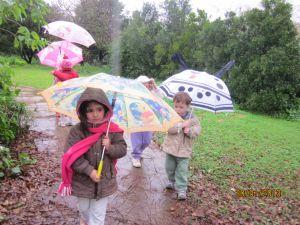 גשם- למידה חווייתית של עונת החורף (3)