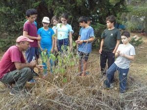 קבוצת עשייה סביבתית - כיתה ו